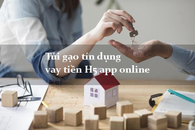 Túi gạo tín dụng vay tiền H5 app online